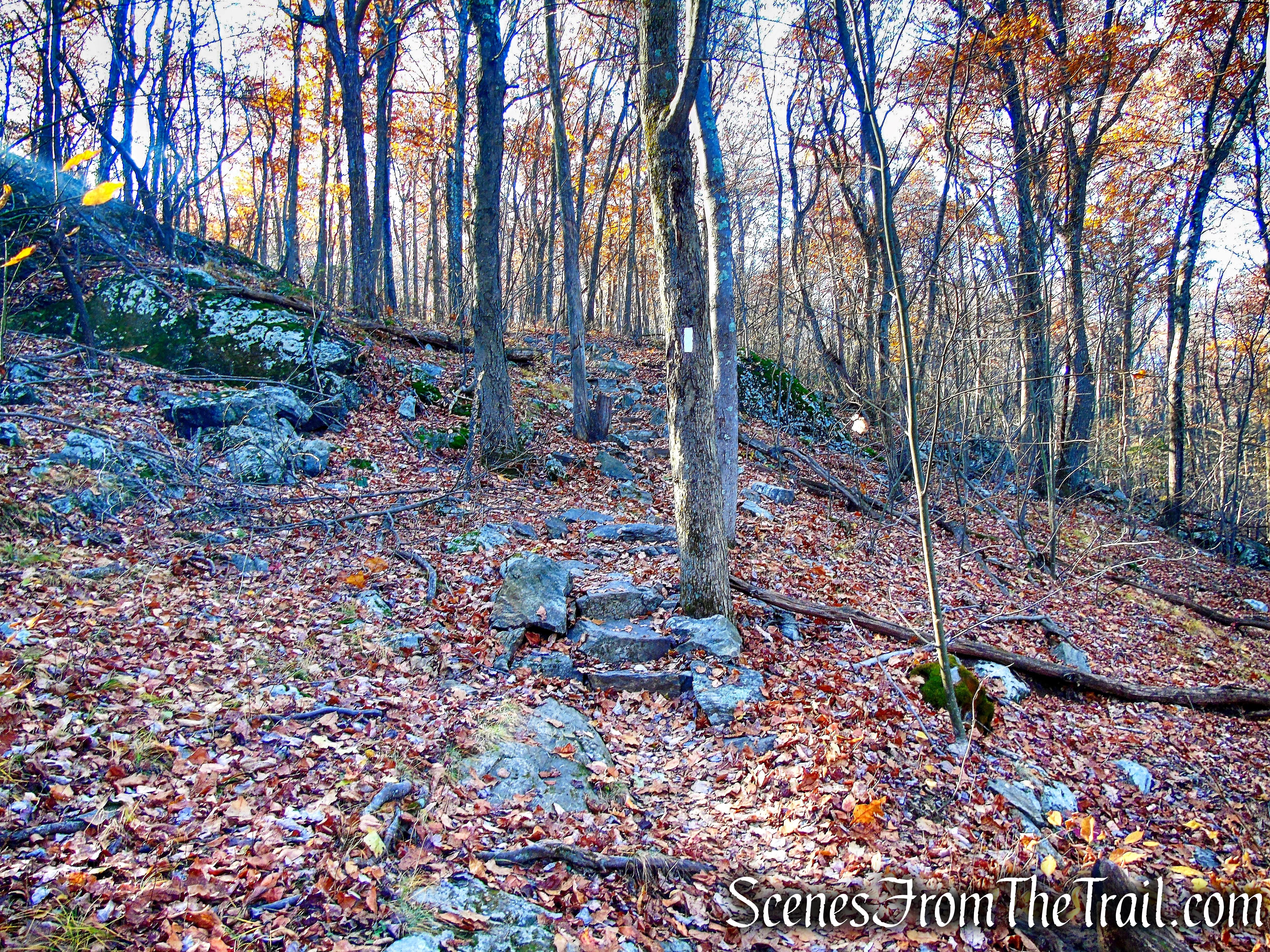 Appalachian Trail - Shenandoah Mountain