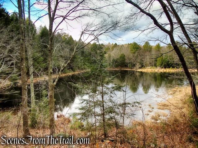 Granniss Pond – Prospect Mountain Preserve