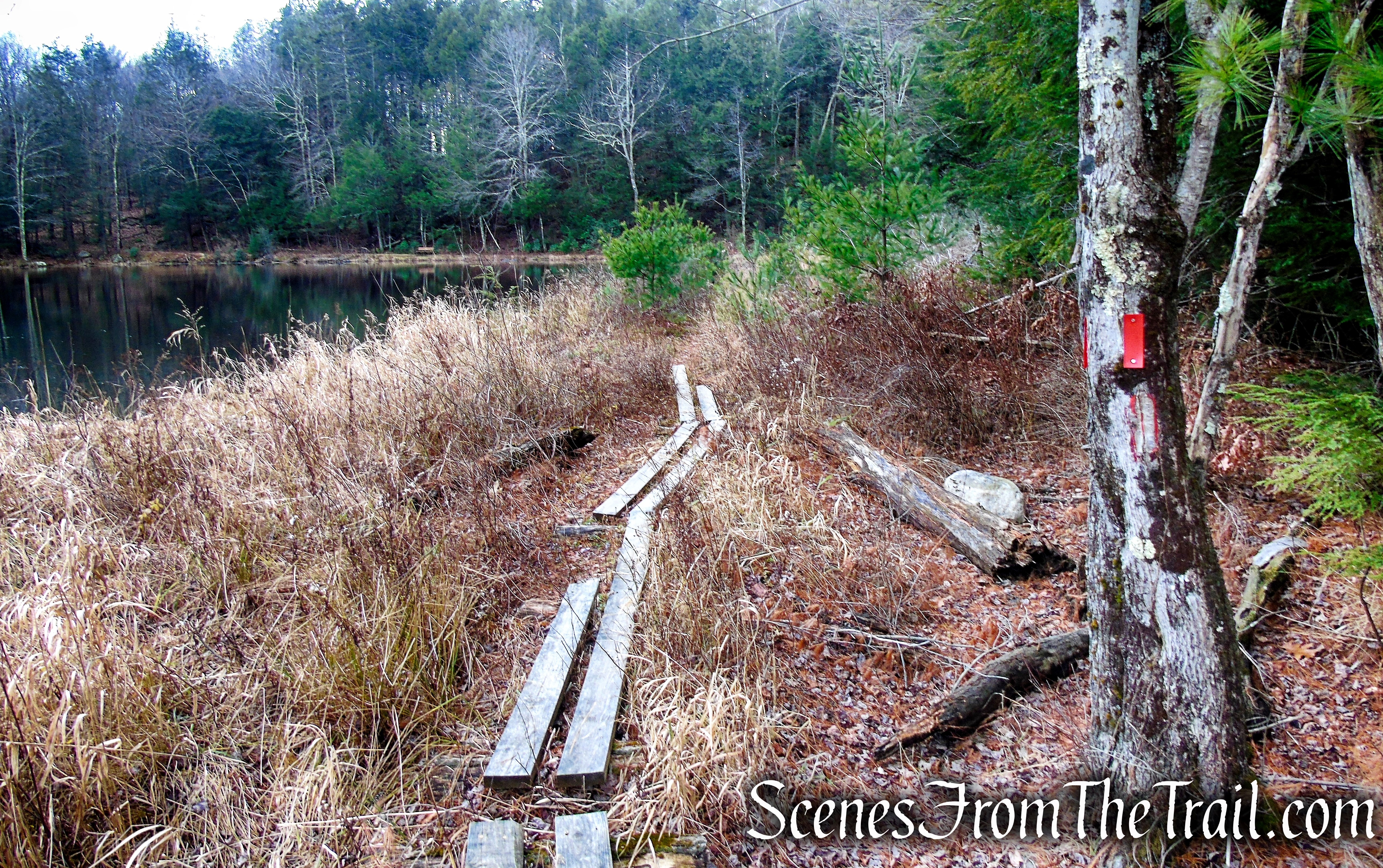 Red Trail – Prospect Mountain Preserve