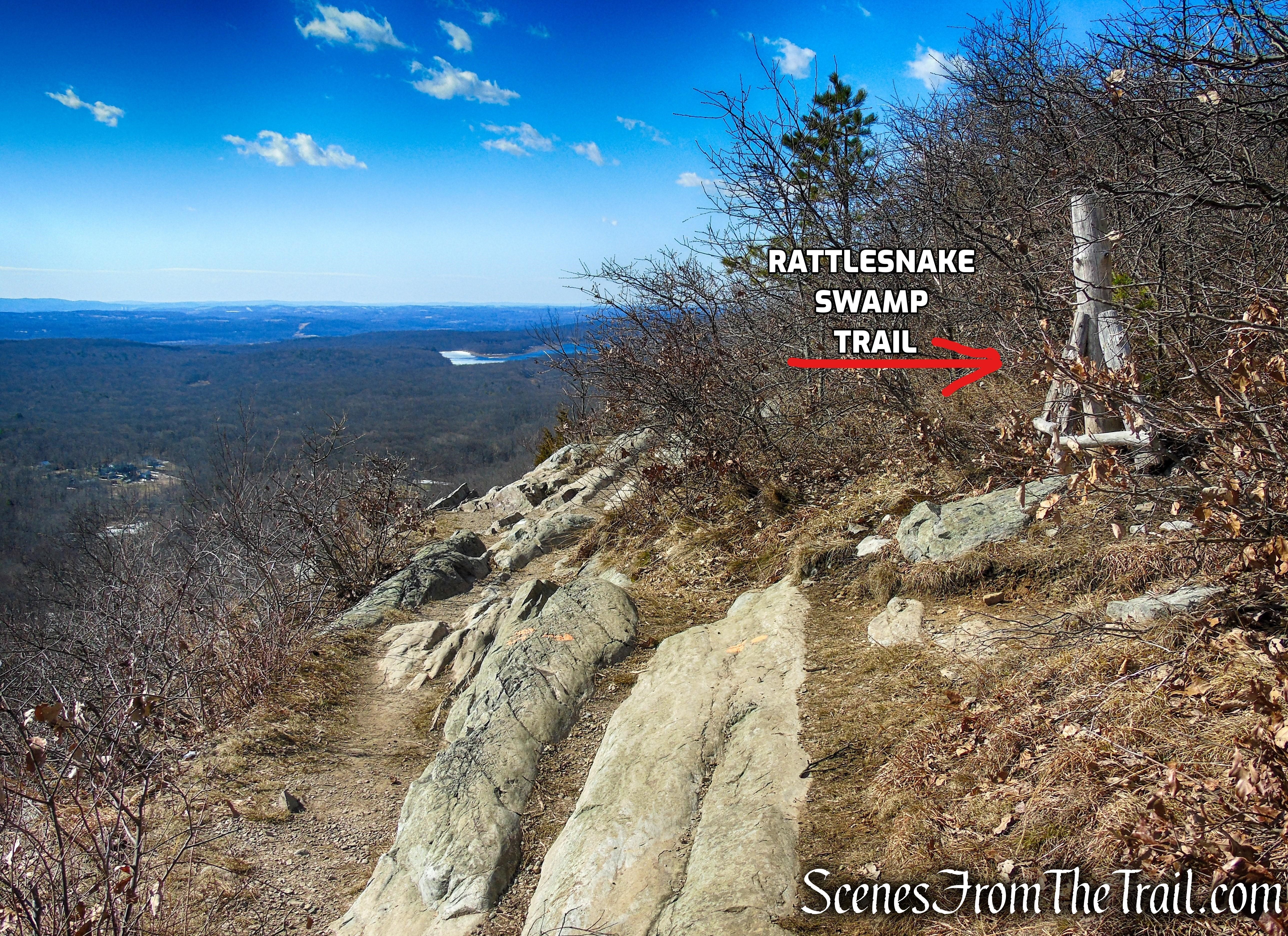 AT/Rattlesnake Swamp Trail junction – Kittatinny Ridge