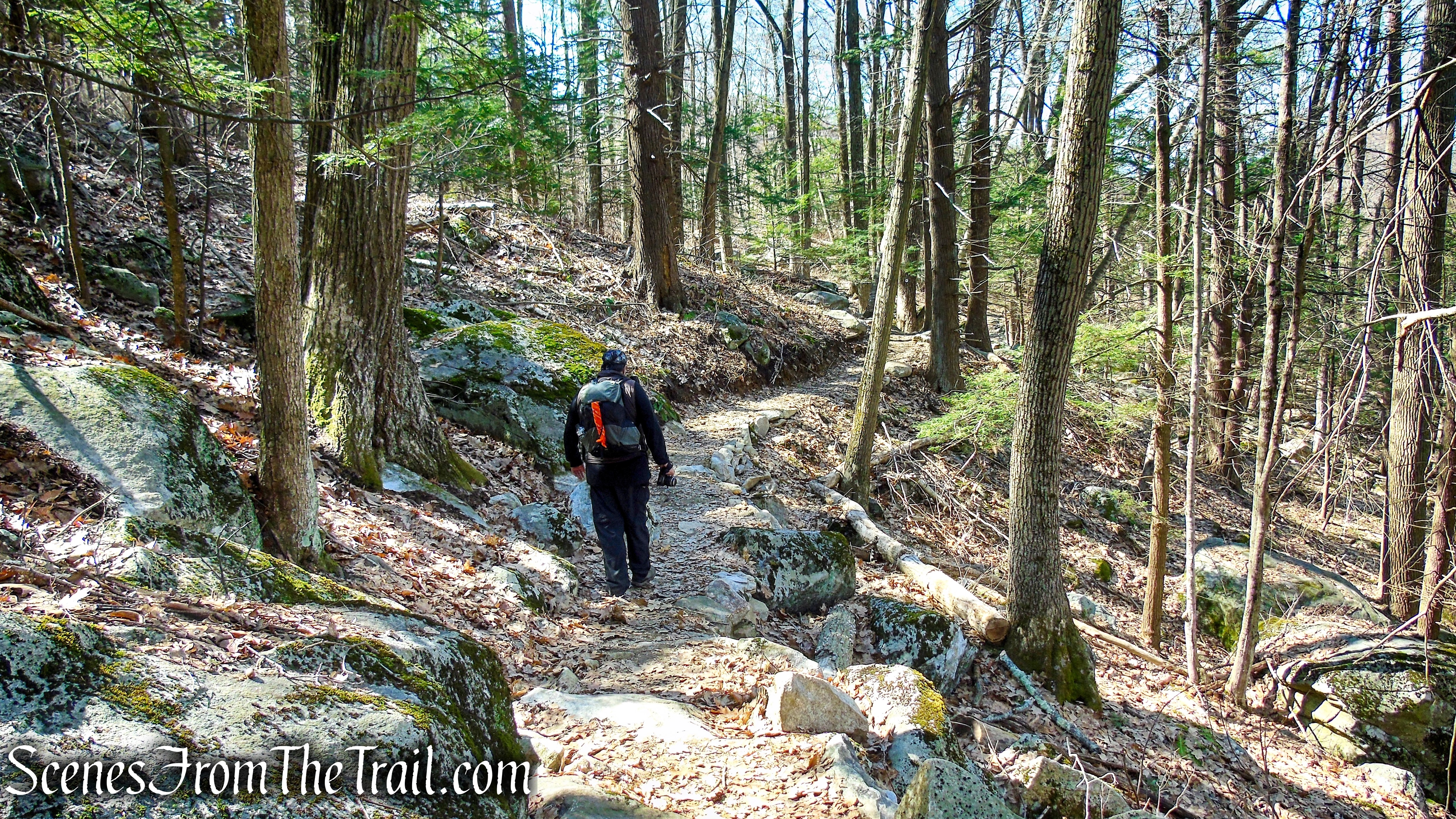 Red Mountain Trails – Sharon Land Trust