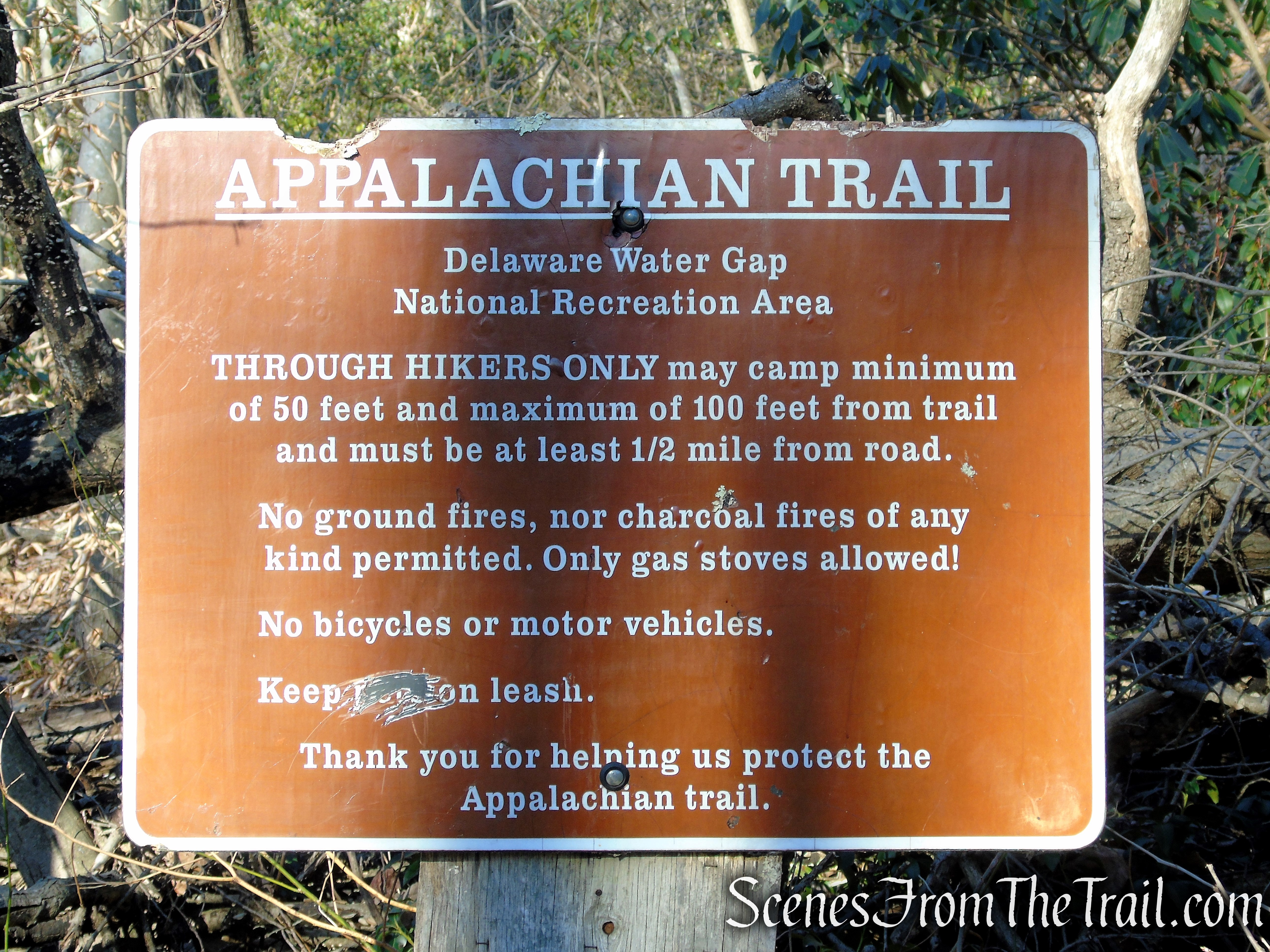 Appalachian Trail - Delaware Water Gap