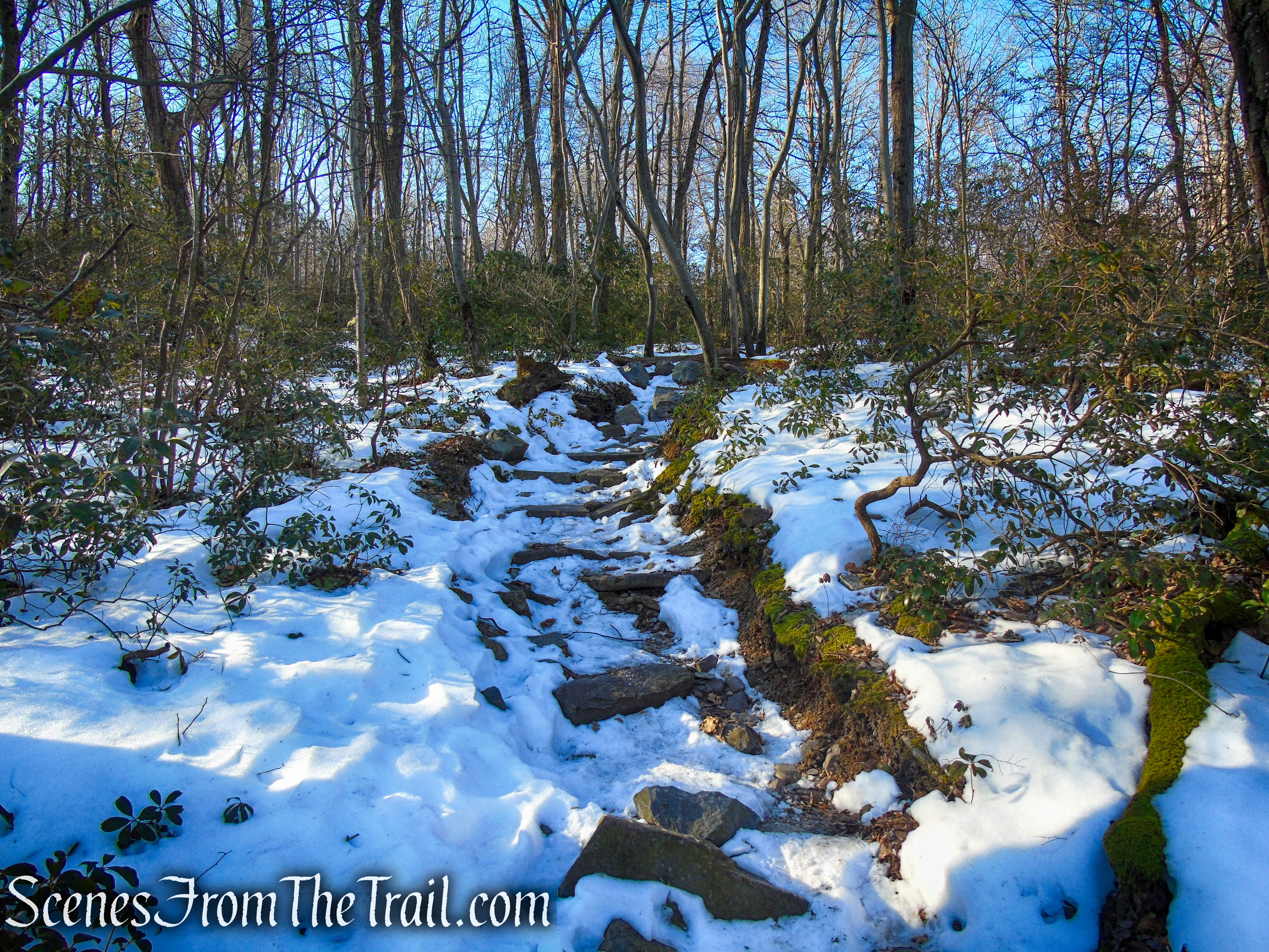 Appalachian Trail - Catfish Mountain