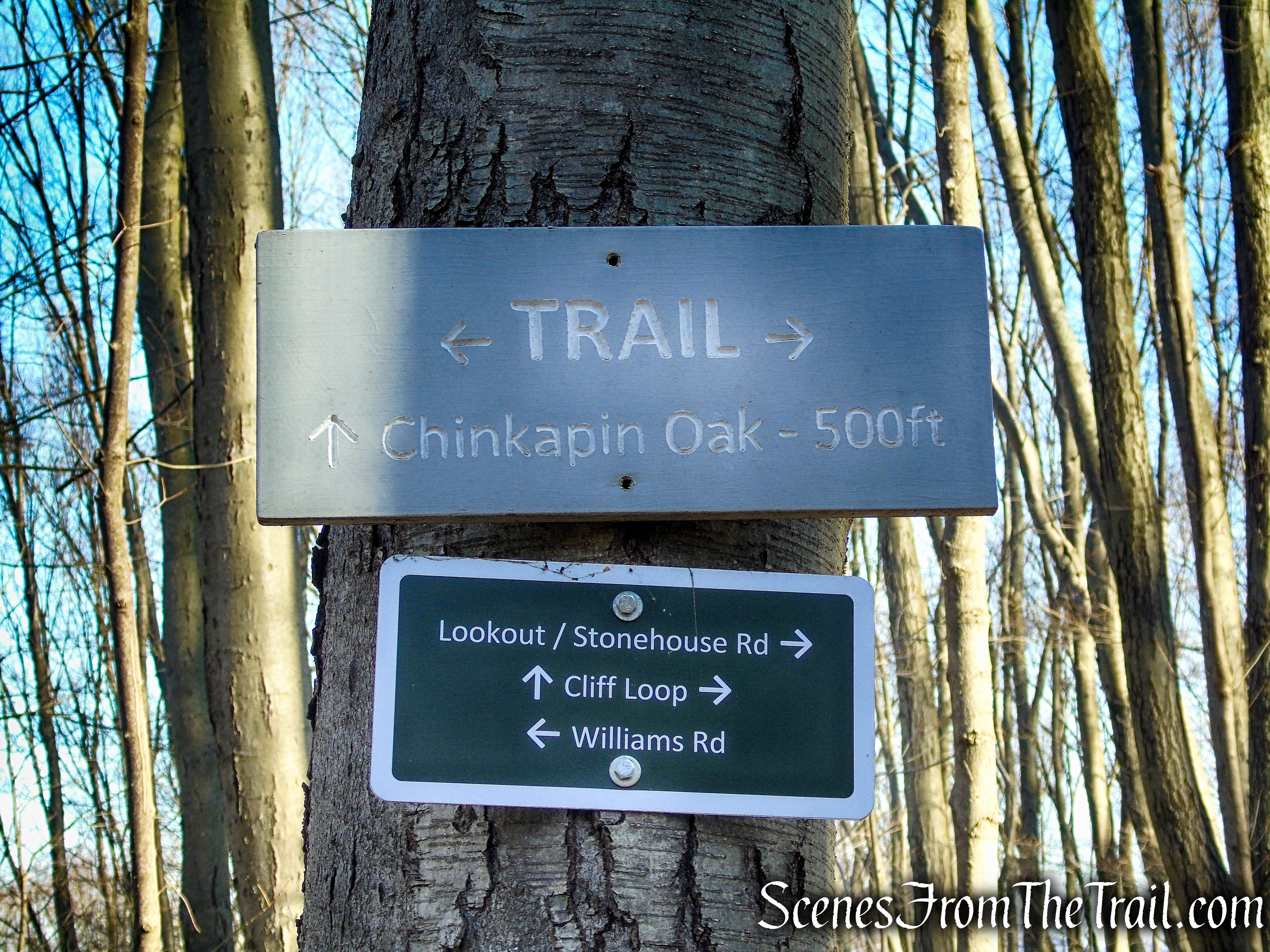 Mary Moore Lookout Trail - Sharon Land Trust