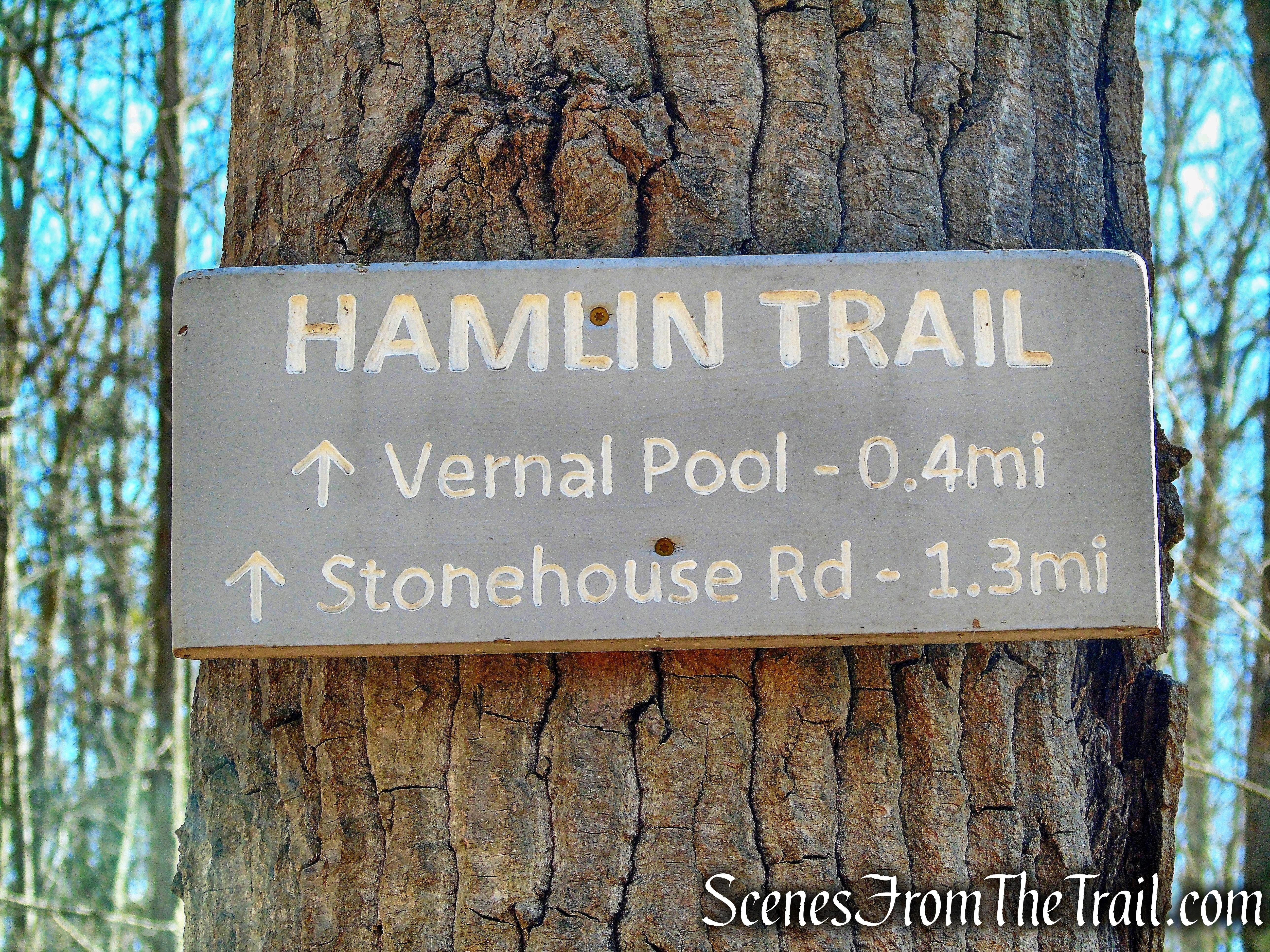 Hamlin Bear Trail - Sharon Land Trust