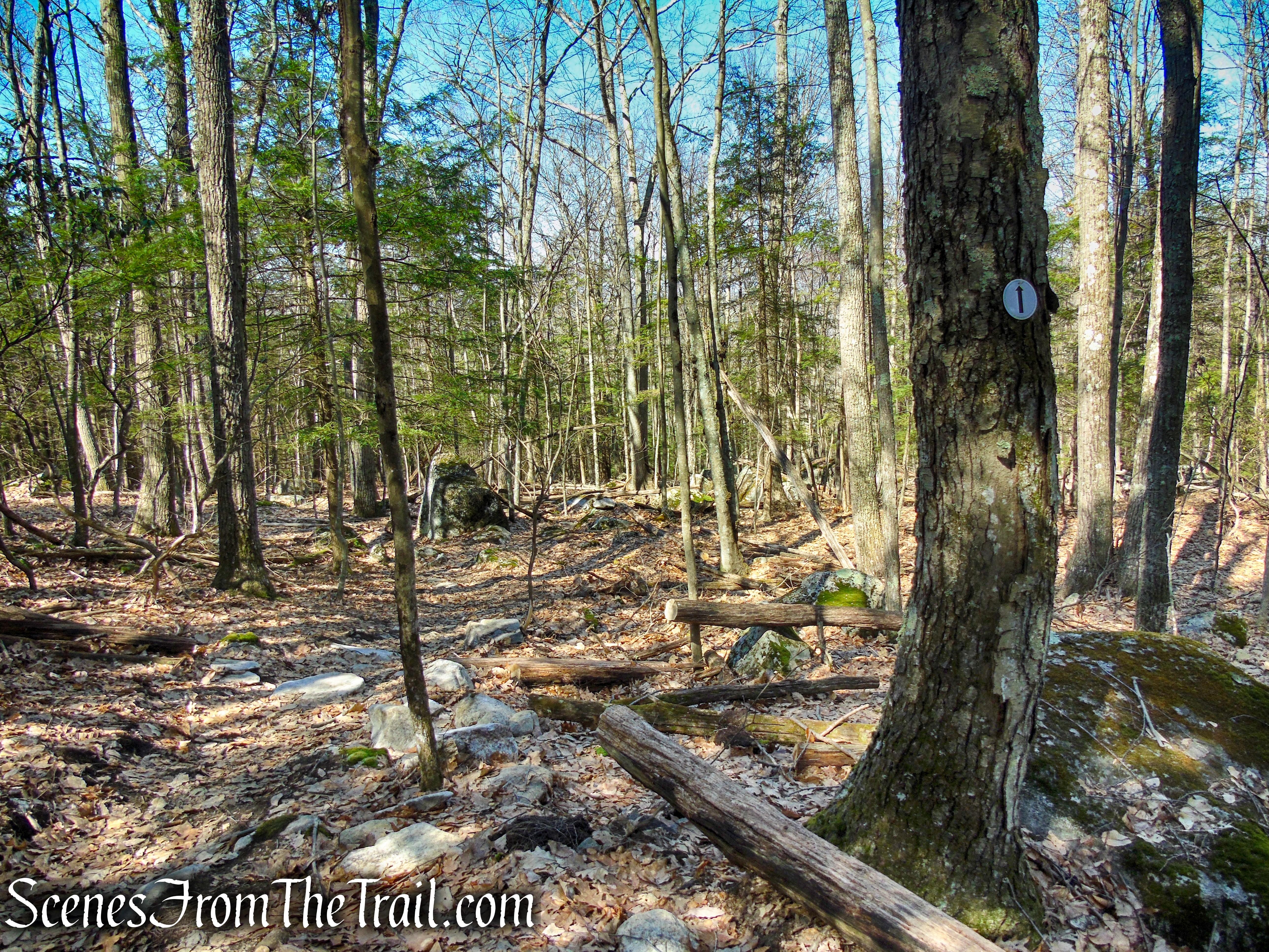 Cliff Loop Extension - Sharon Land Trust
