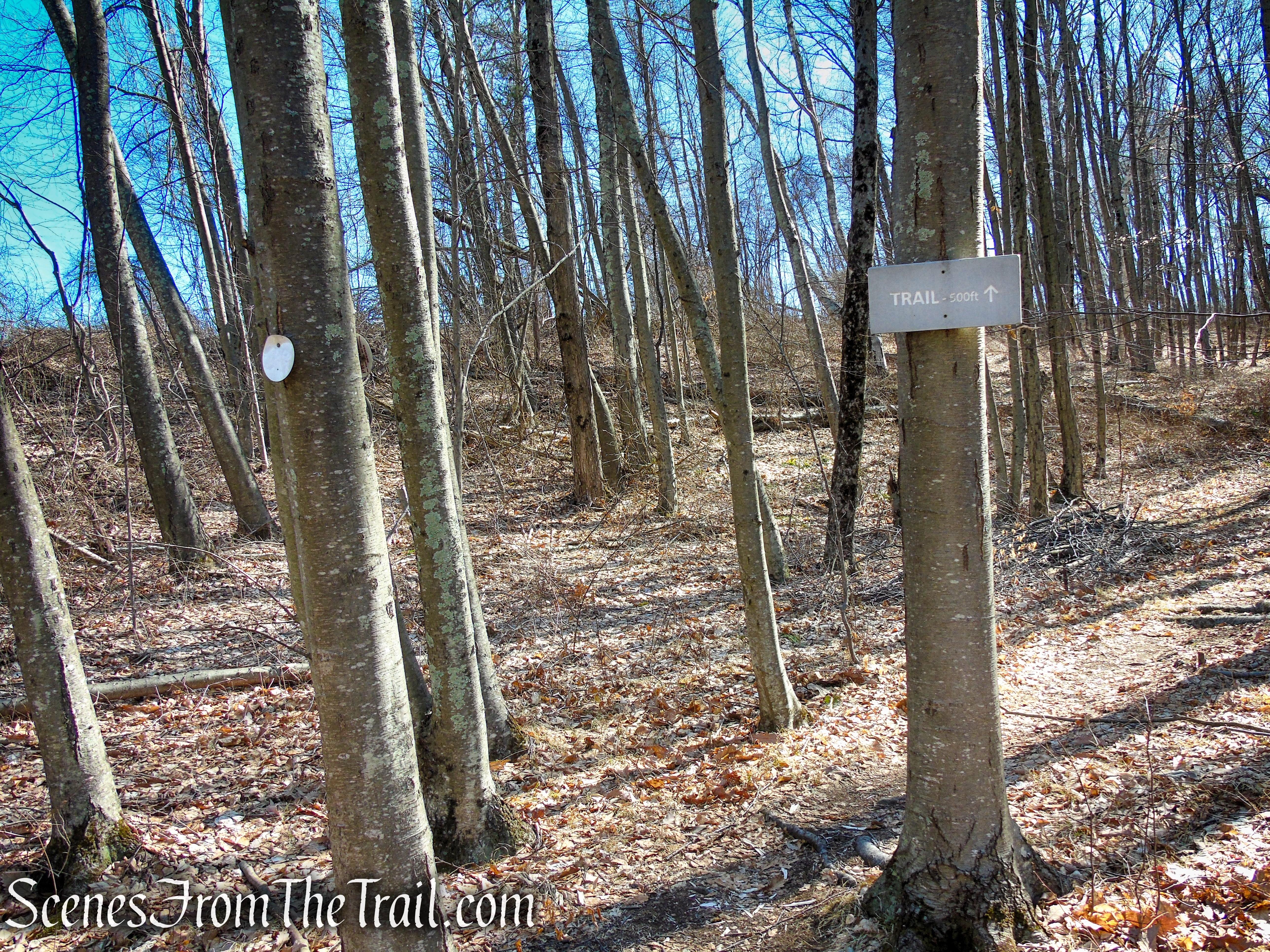Cliff Loop - Sharon Land Trust
