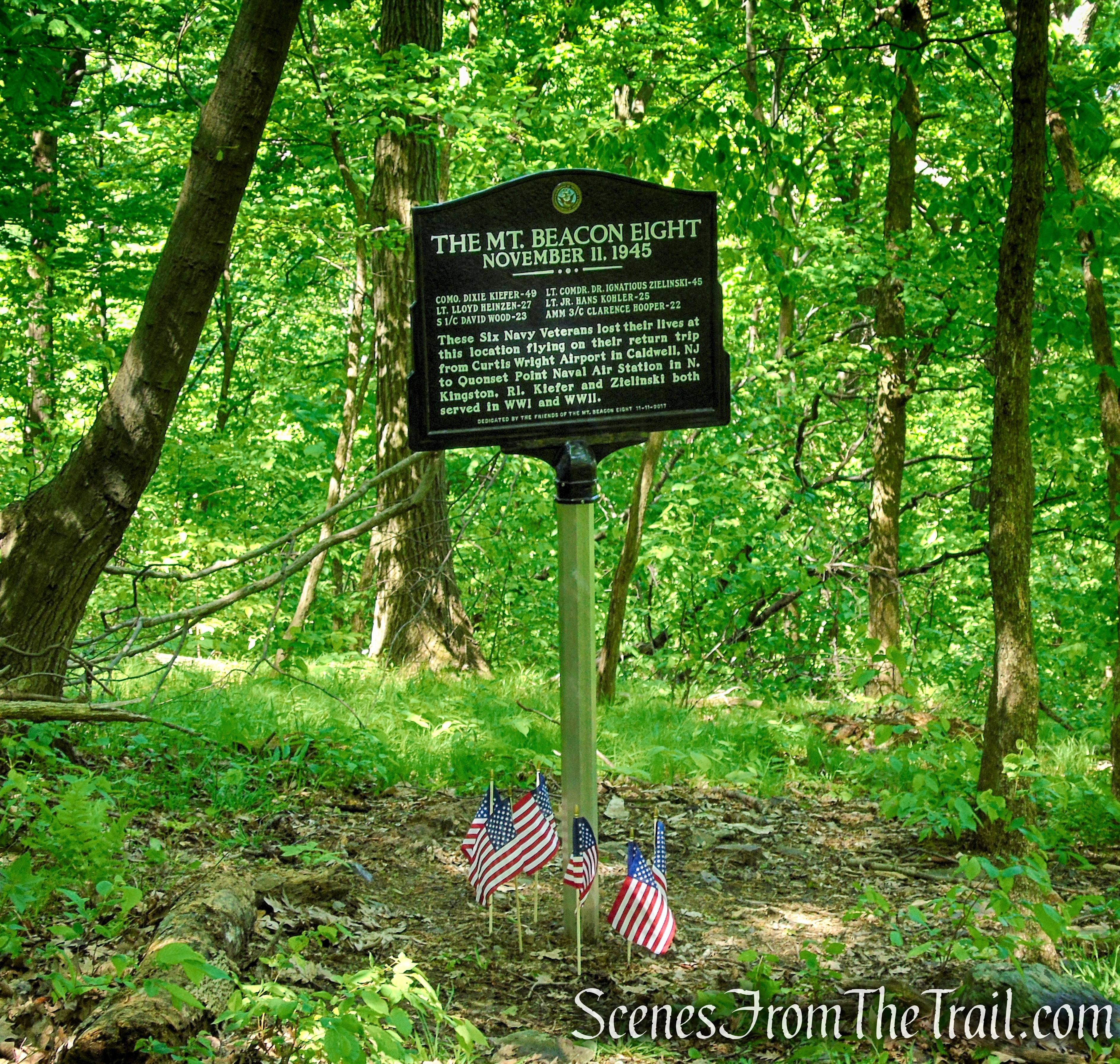 1945 Plane Crash Site – Bald Hill