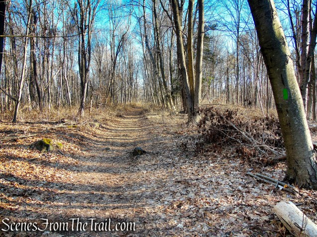 Green Trail - Crescent Lake Recreation Area