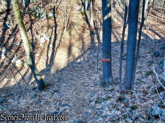 turn left on the Orange Trail