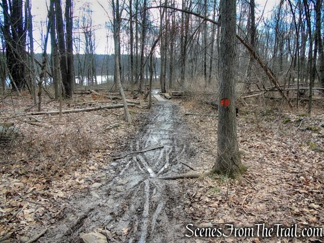 Orange Trail - Crescent Lake Recreation Area