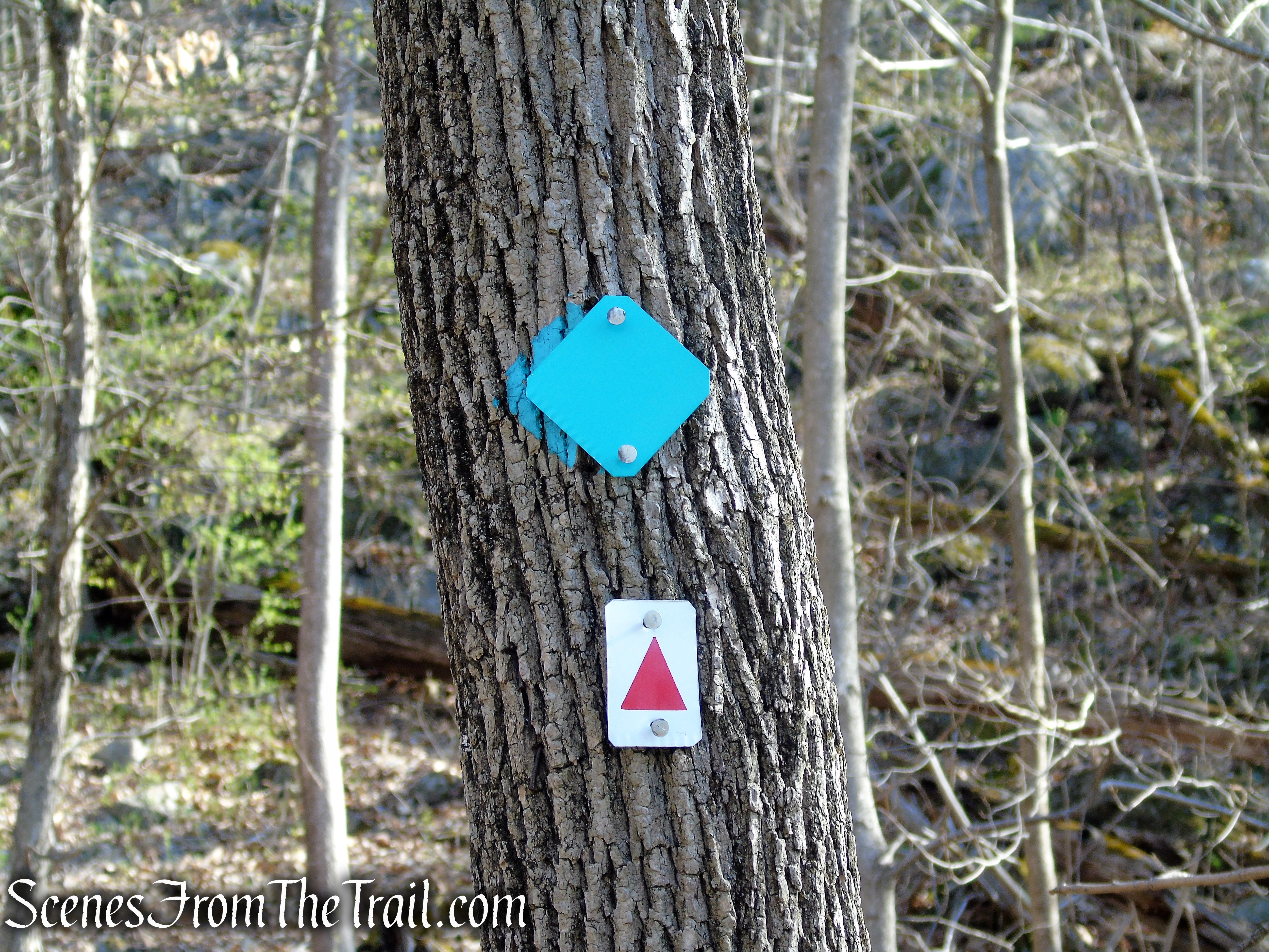 coaligned Highlands and the Stonetown Circular Trails - Windbeam Mountain