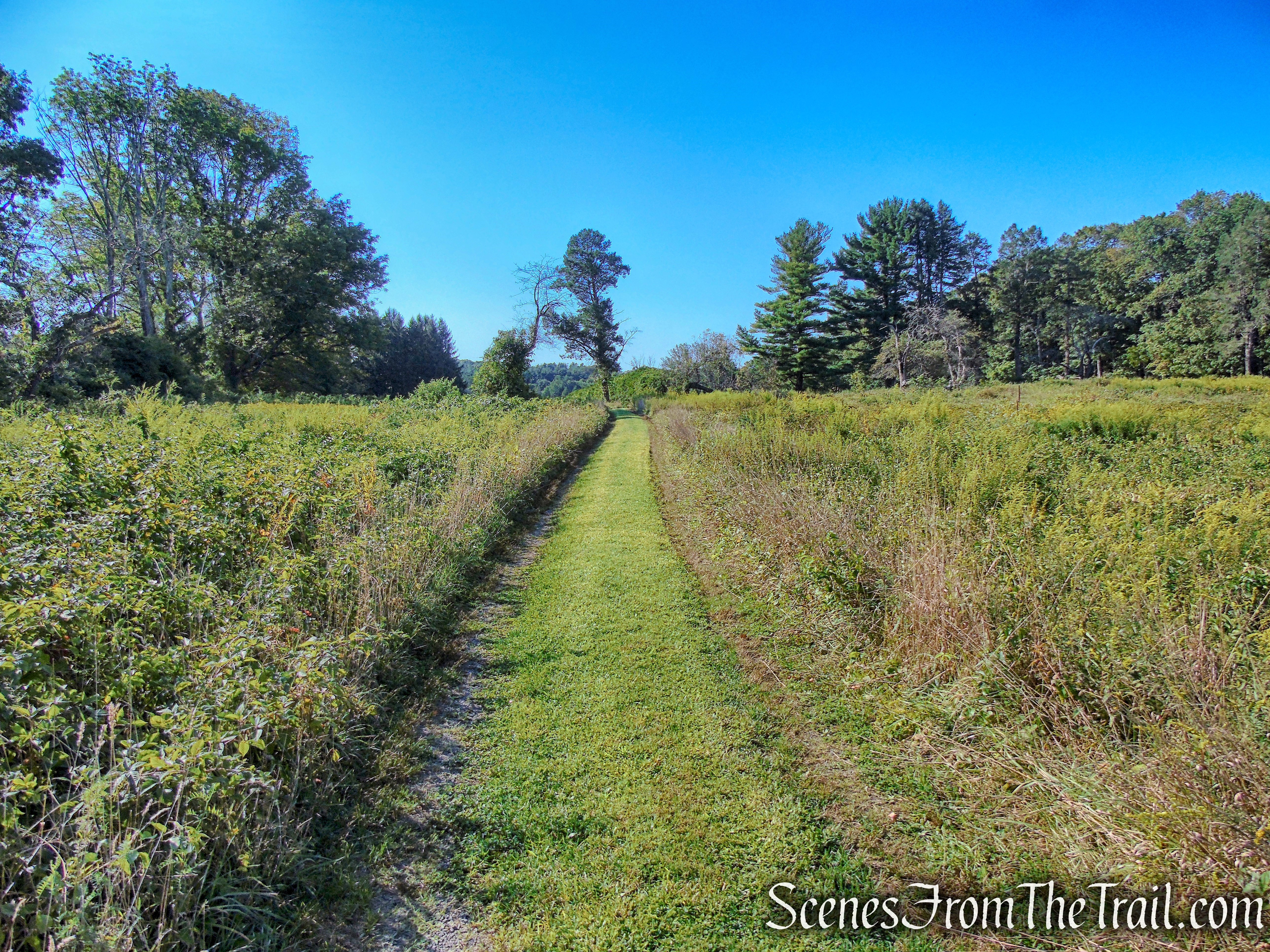 Hill to Meadow Trail - Merestead