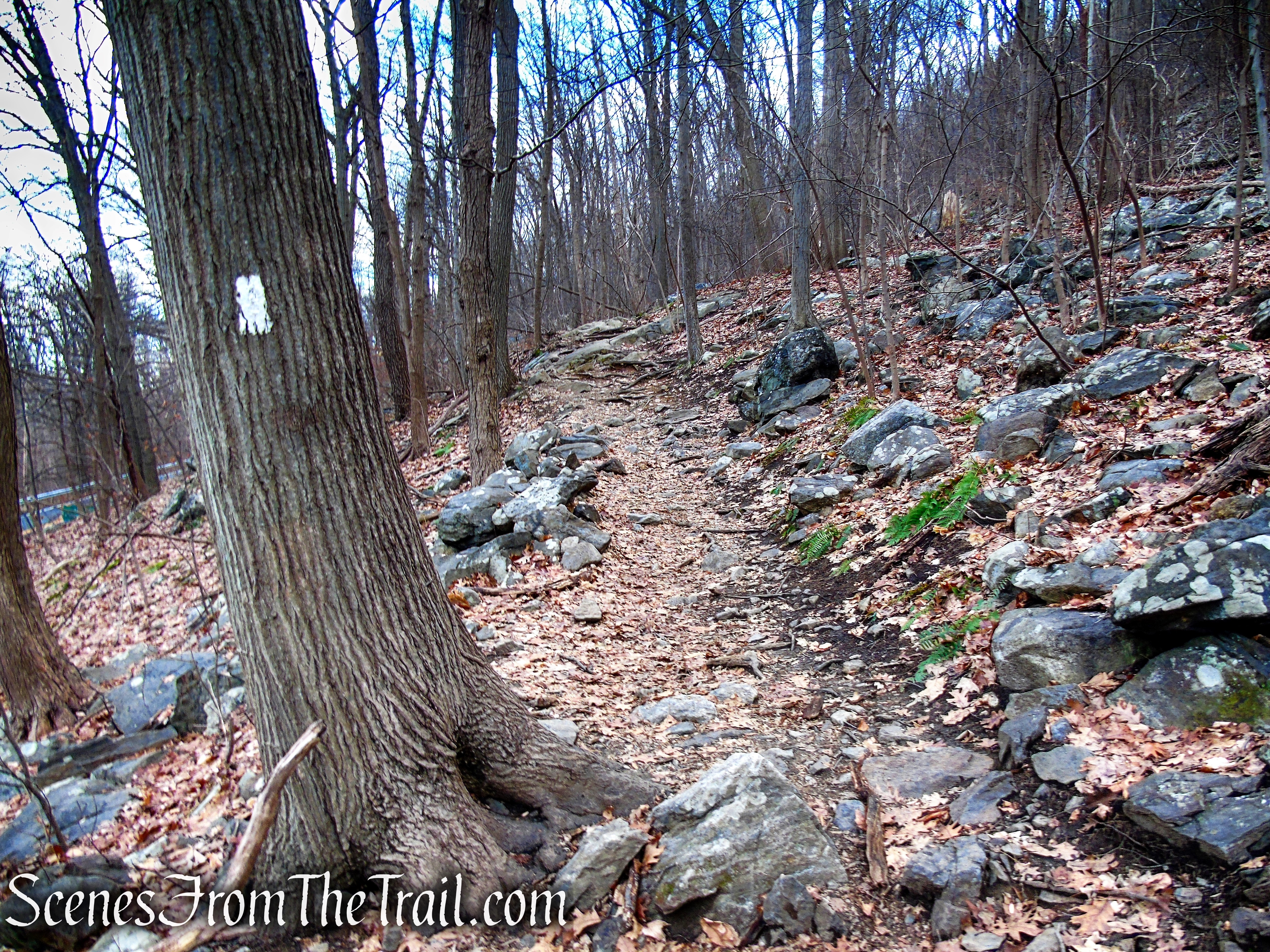 Appalachian Trail - Anthony's Nose