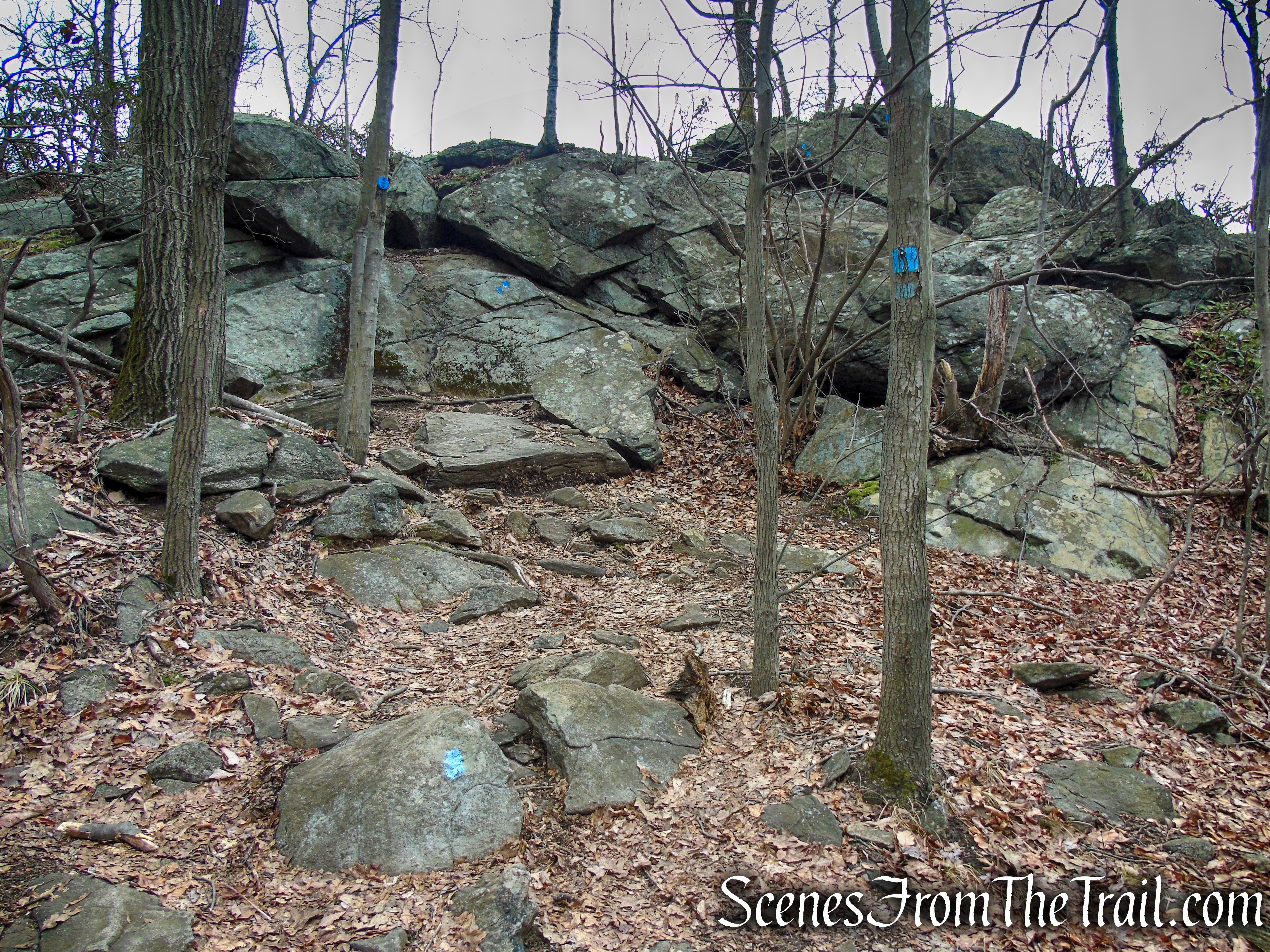 Camp Smith Trail – Anthony's Nose