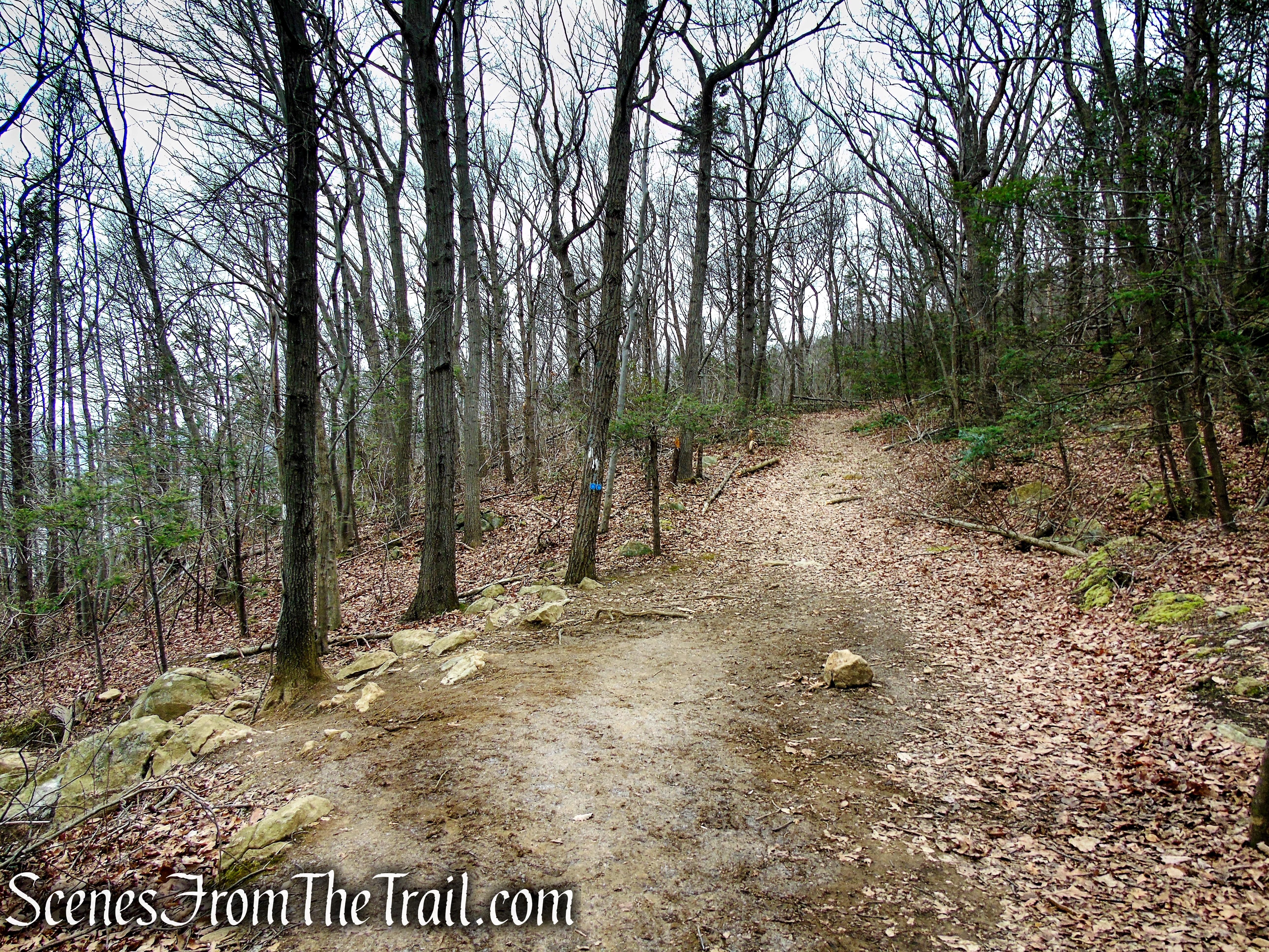 turn left on Appalachian Trail