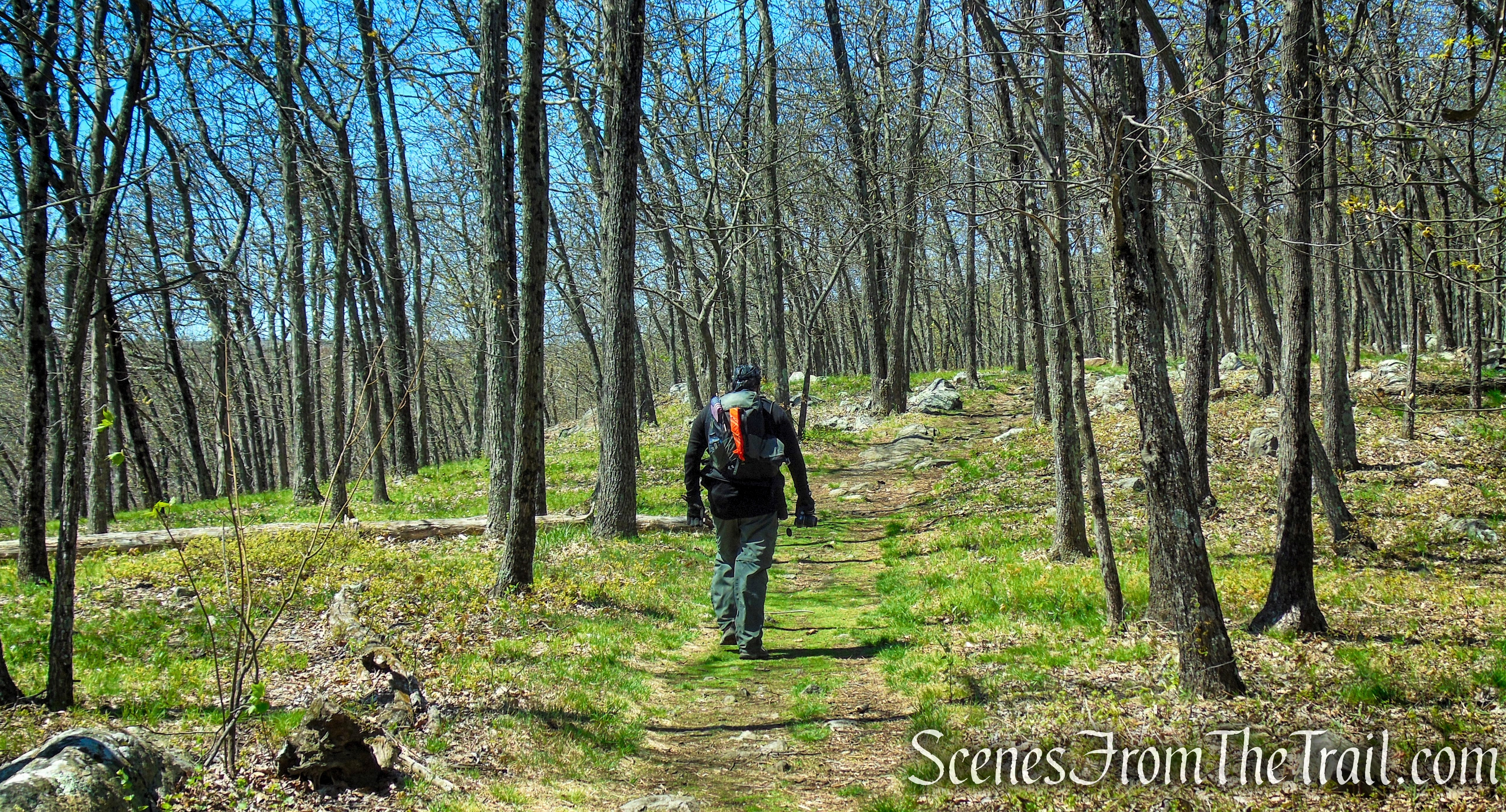 Raccoon Ridge from Mohican Outdoor Center
