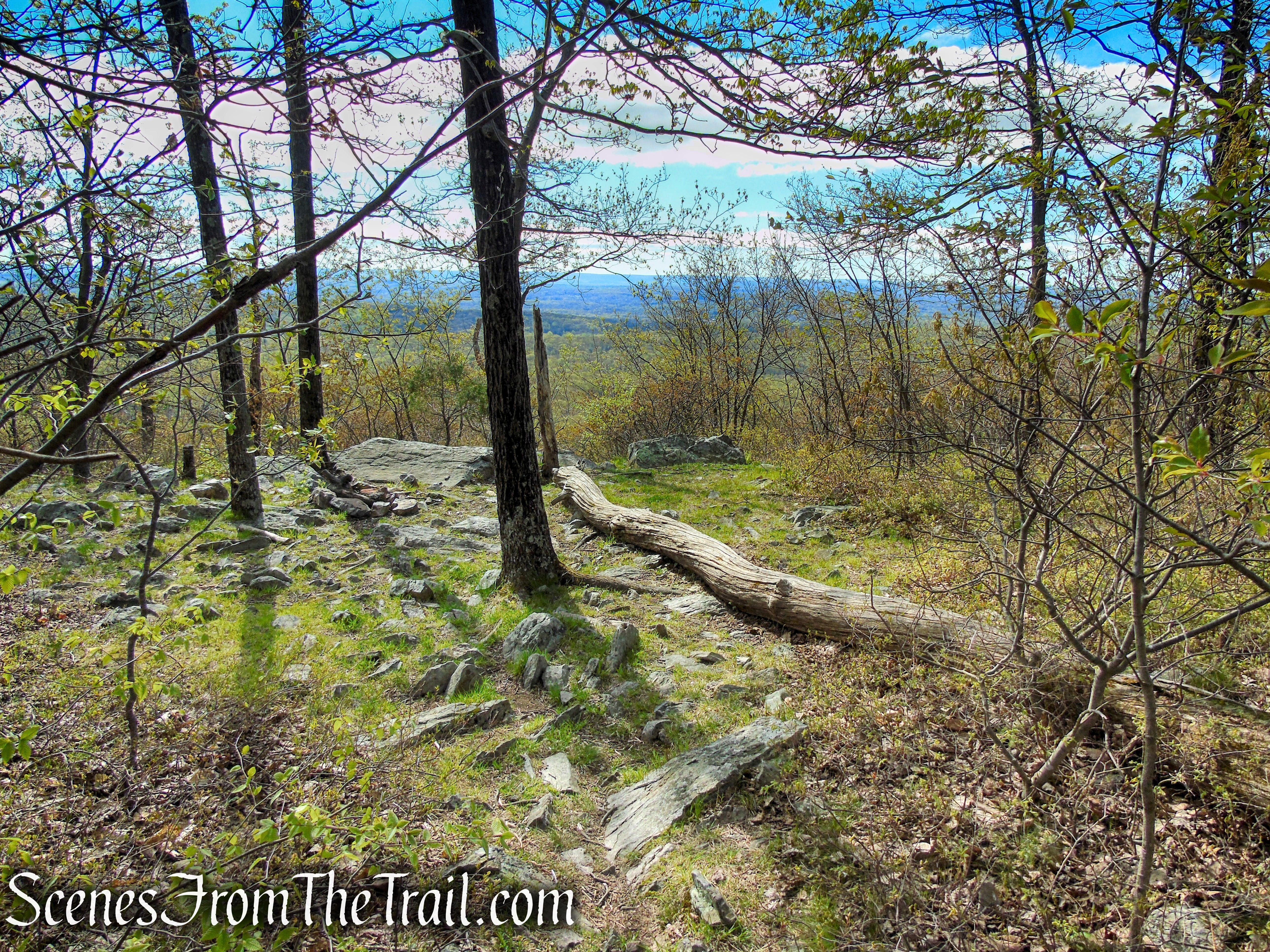 1st viewpoint - Mount Mohican