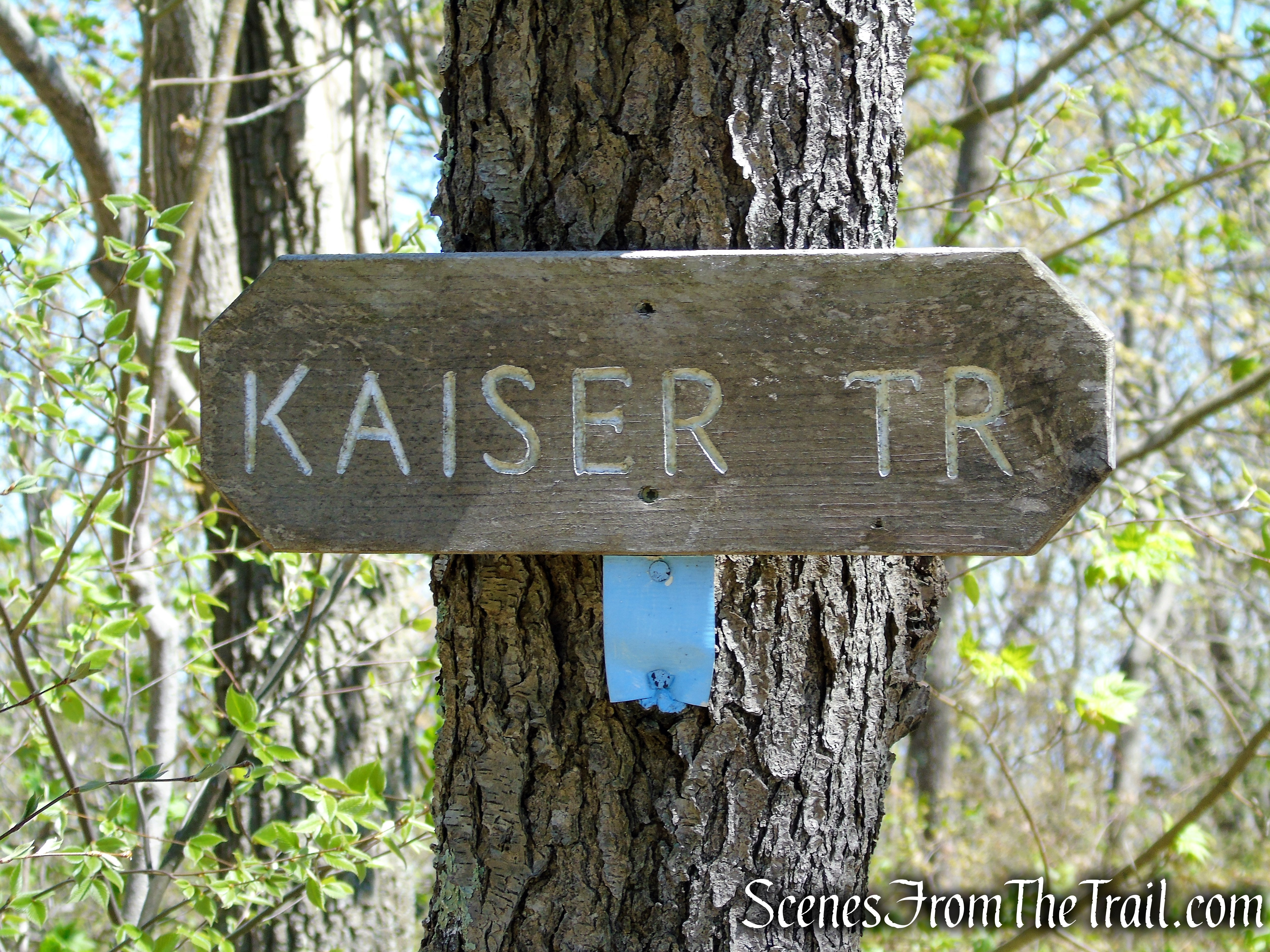 Continue past the junction with the Kaiser Trail