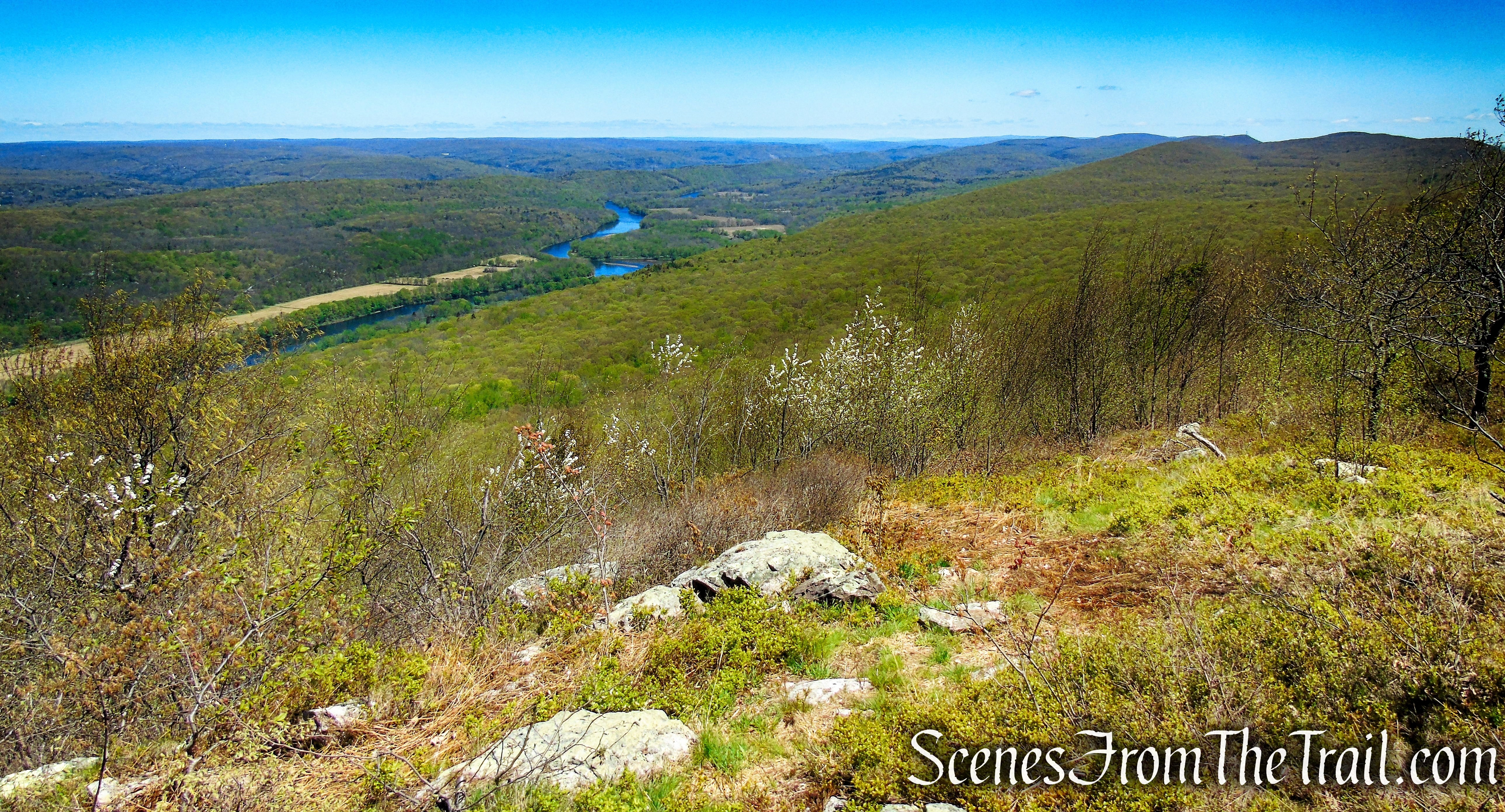 Appalachian Trail - Mount Mohican - Worthington State Forest
