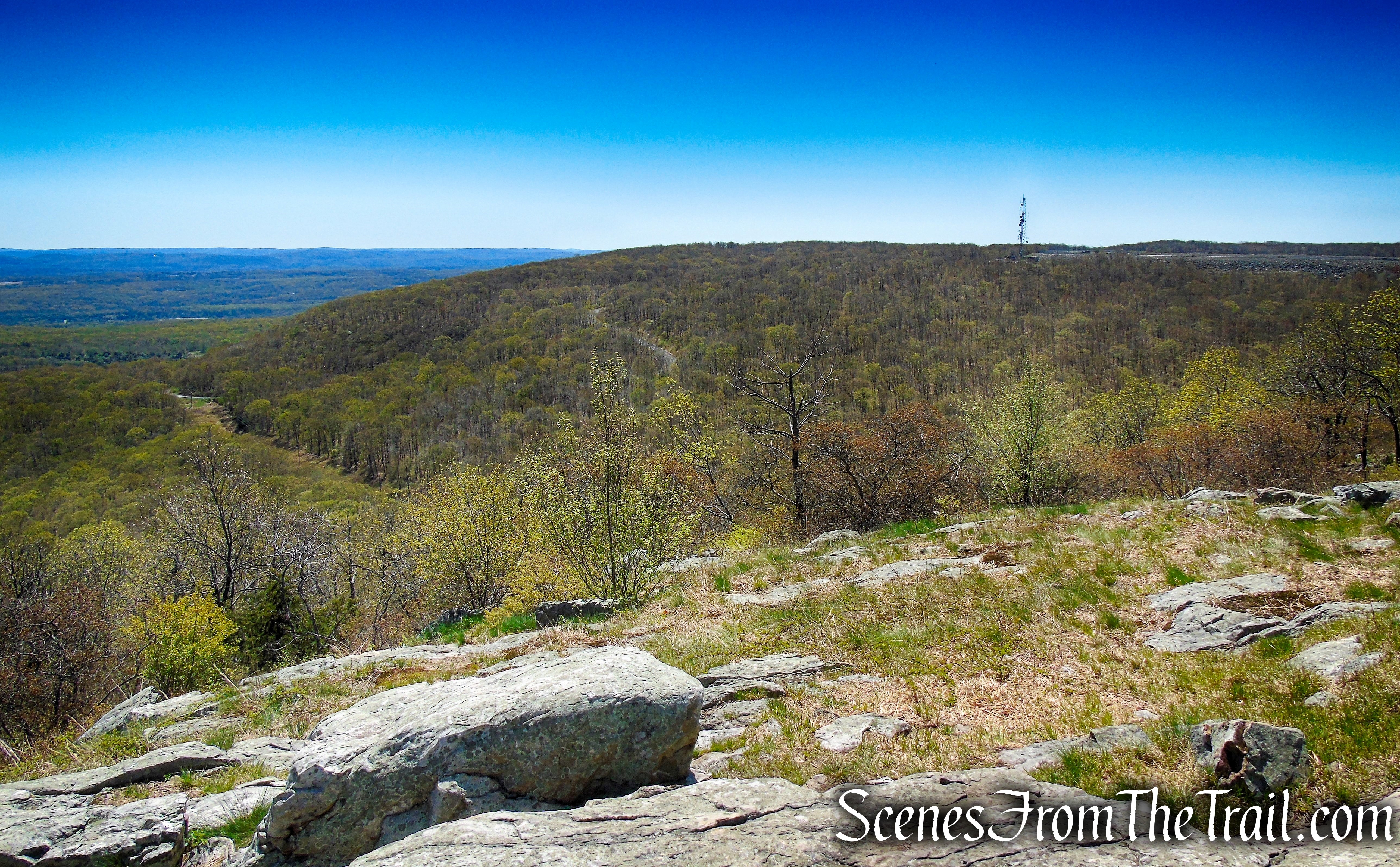 view south from Raccoon Ridge