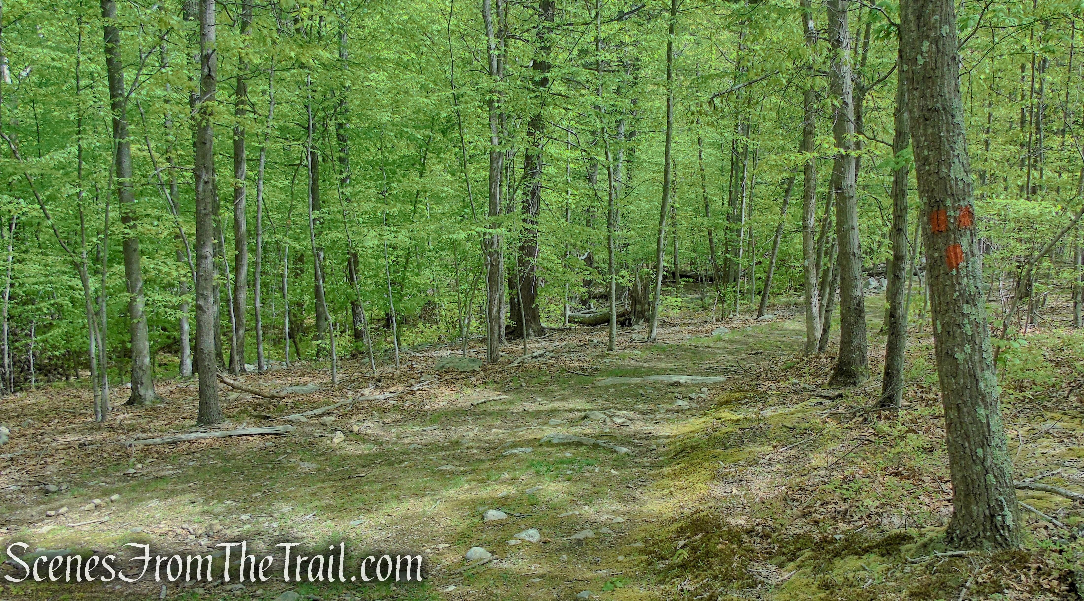 terminus of Orange Trail - Dater Mountain Nature Park