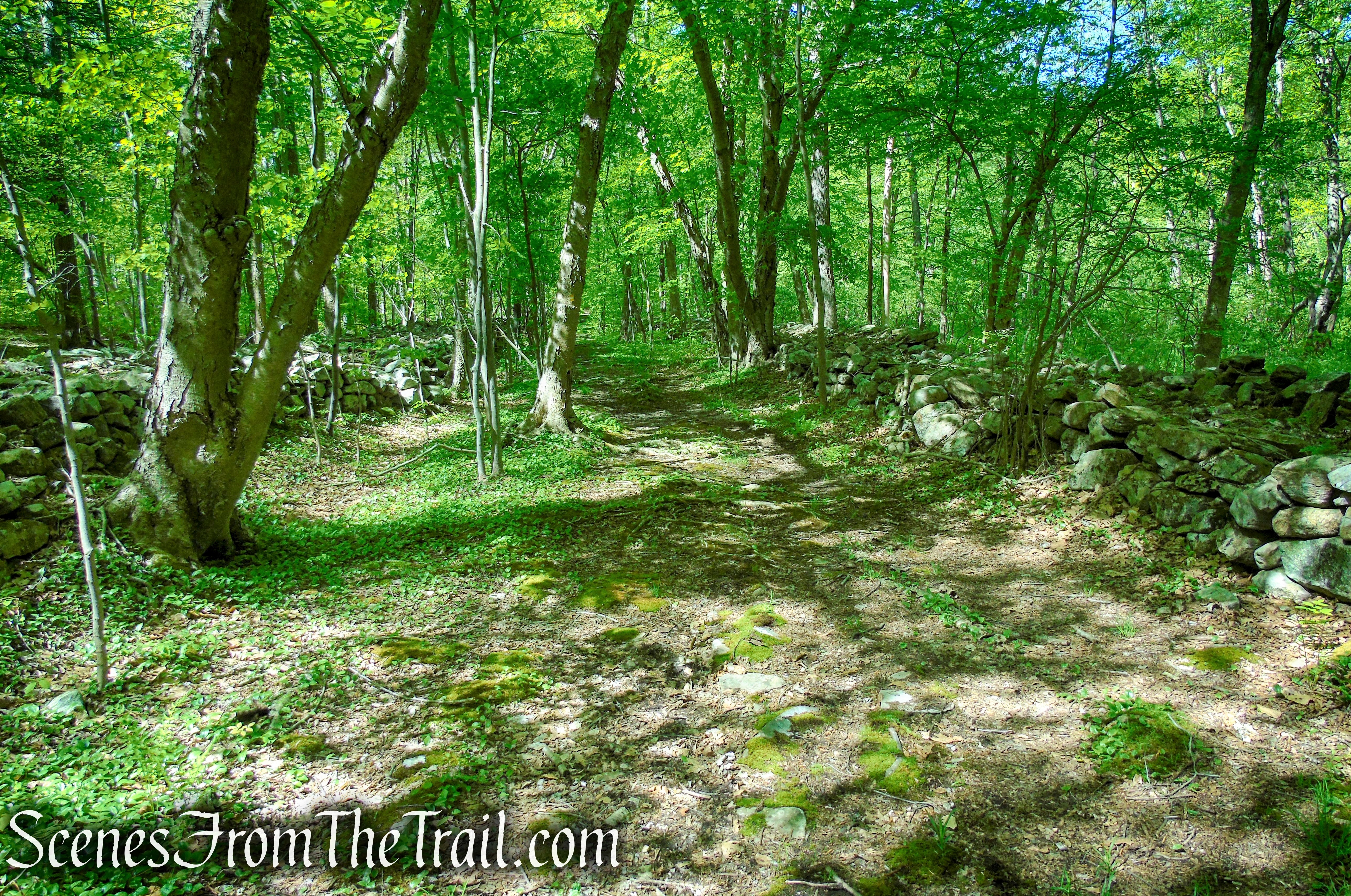 """Broadway"" - Indian Hill Loop Trail"