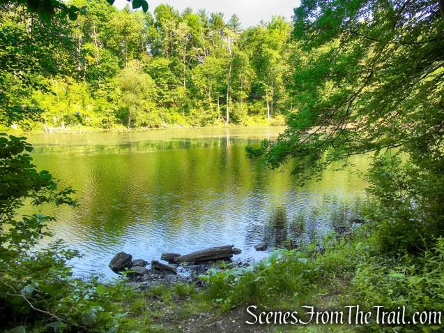 Patriots' Path - Black River County Park