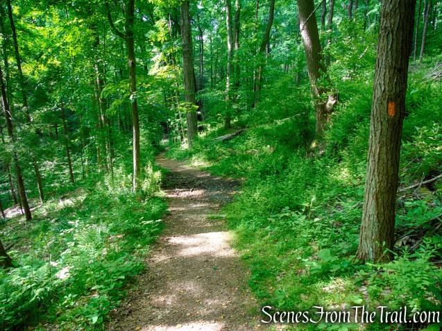 Orange Trail - Black River County Park