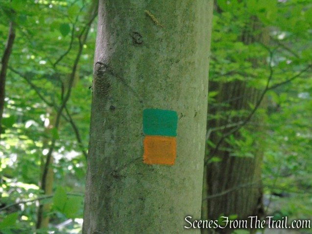Green/Orange Connector Trail - Black River County Park