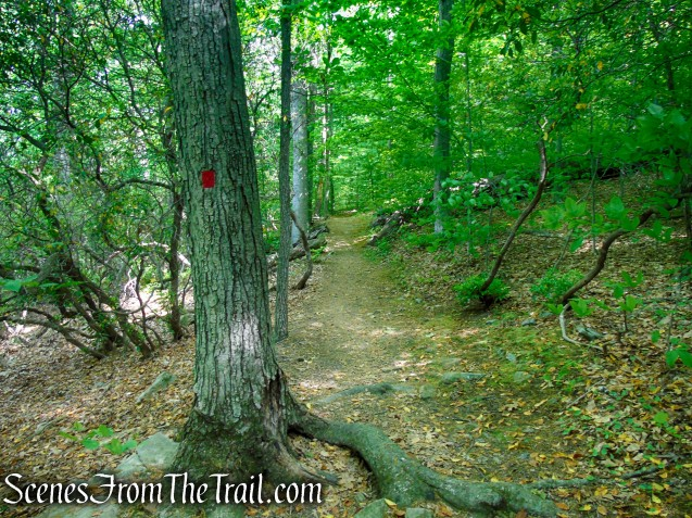 Red Trail - Black River County Park