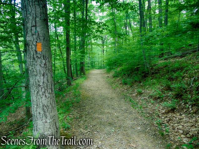 Turn left on Orange Trail