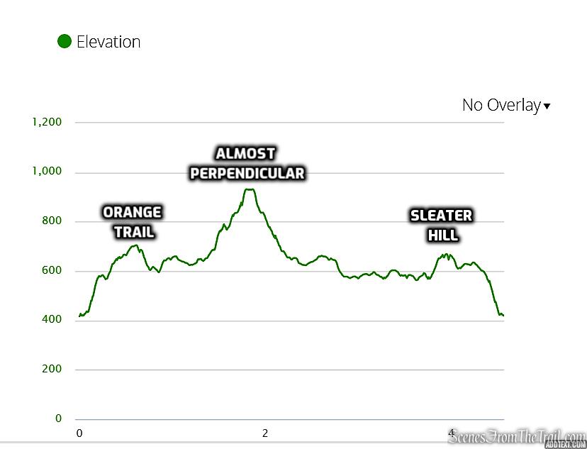 elevation profile - Dater Mountain Nature Park