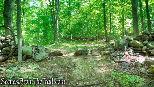 After passing through the stone wall, turn right on the Red Trail