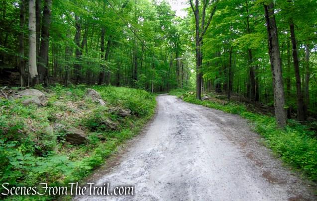 Sunken Mine Road