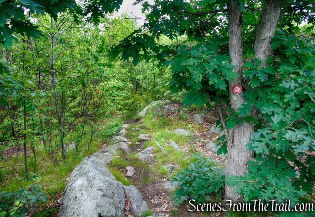 Candlewood Hill Trail – Fahnestock State Park