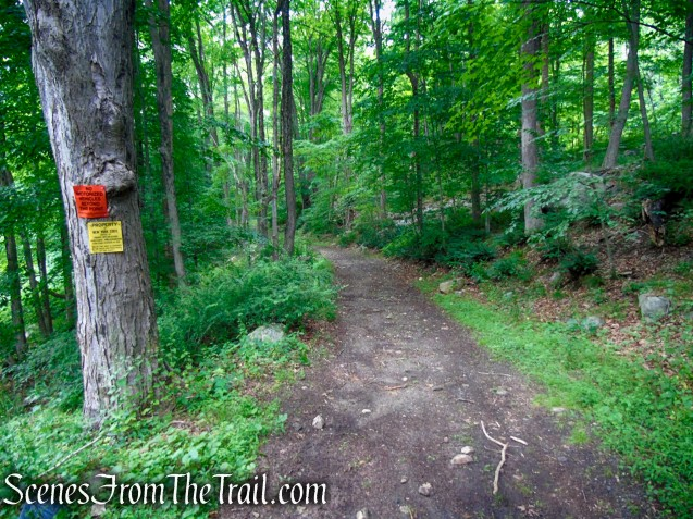 Bell Hollow Road – Fahnestock State Park