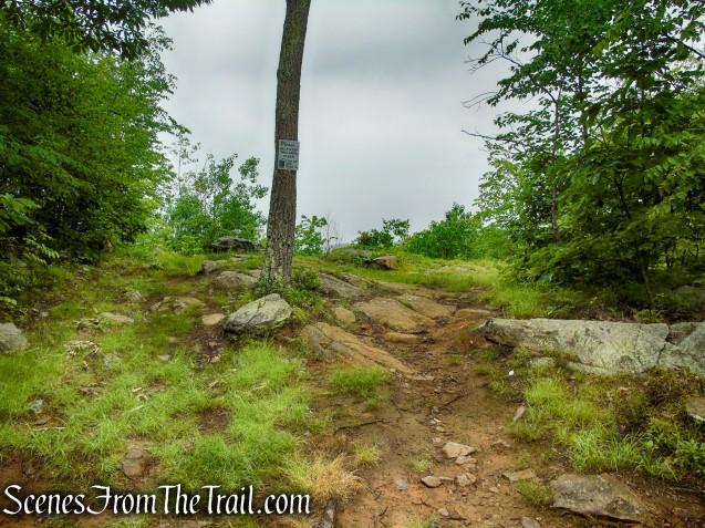 Viewpoint off of Sunken Mine Road