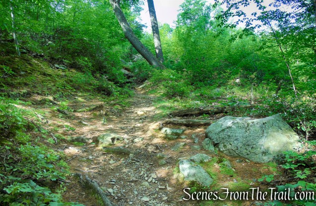 Candlewood Hill Trail - Fahnestock State Park