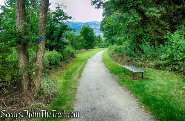 Blue Marsh Trail - West Point Foundry Preserve