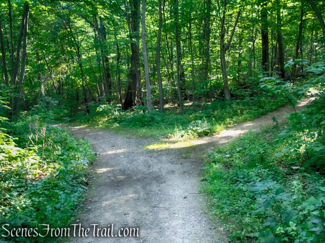 Turn right on Orange Trail