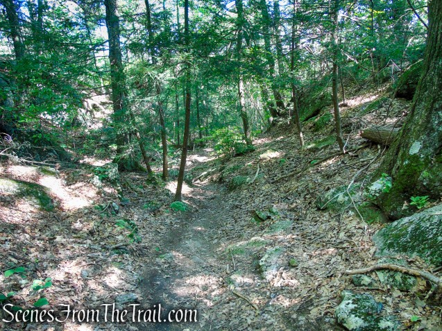 Blue Trail - Pootatuck State Forest