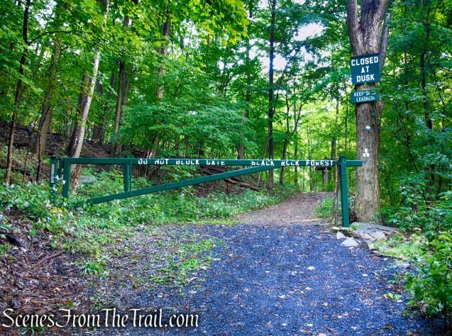 Old Mineral Springs Road Trailhead