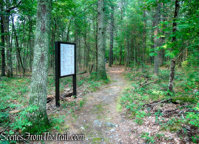 Upper Hornbecks Creek Trail - Emery Road